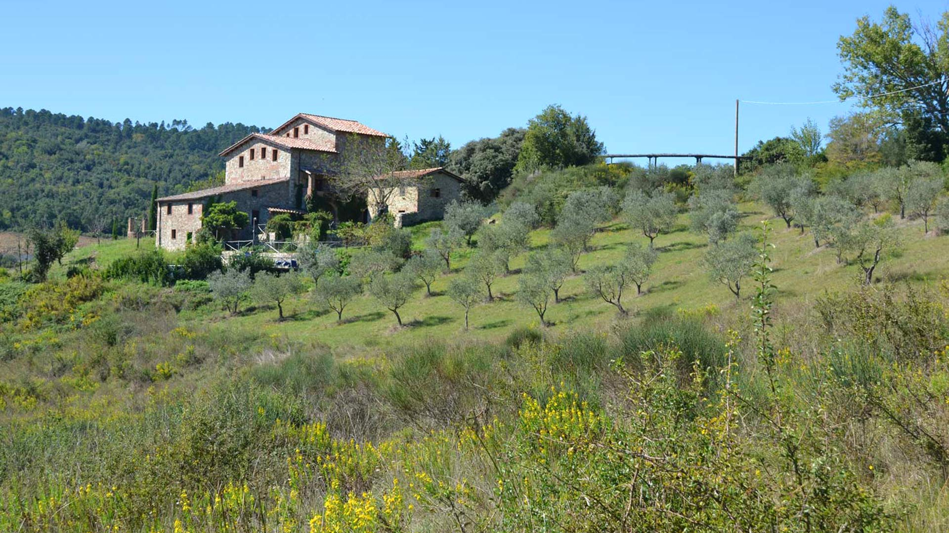 Palazzetto Farm House