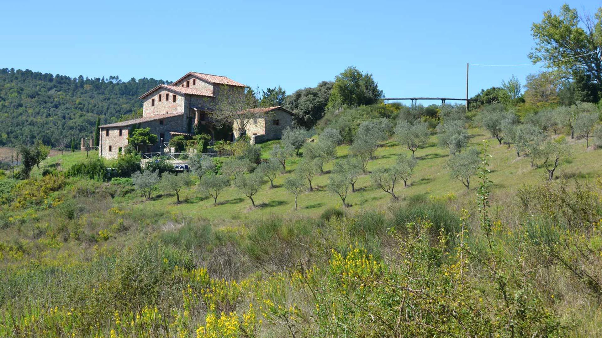 Palazzetto Farm House