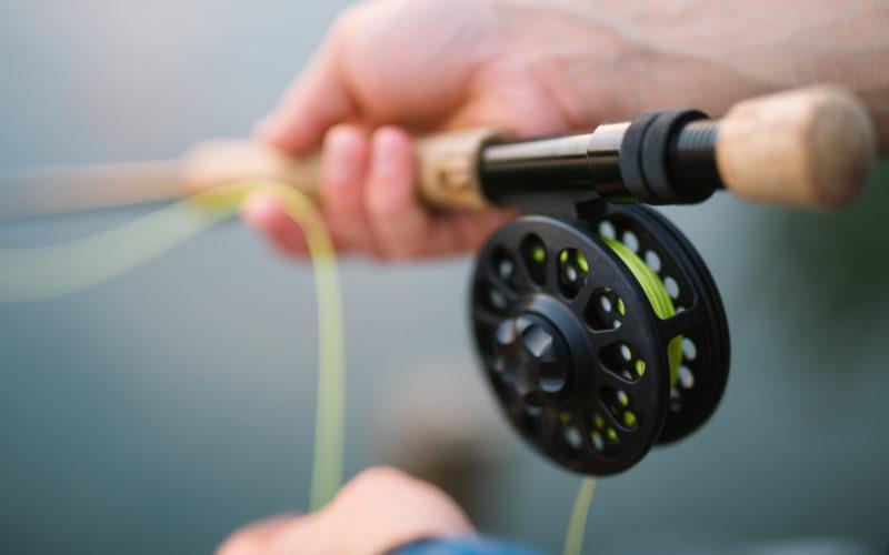 Game fishing and hunting
